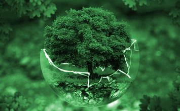 Eco Programm Spülmaschine